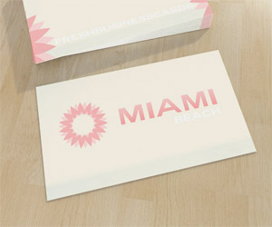 Soft Business Card with Logo